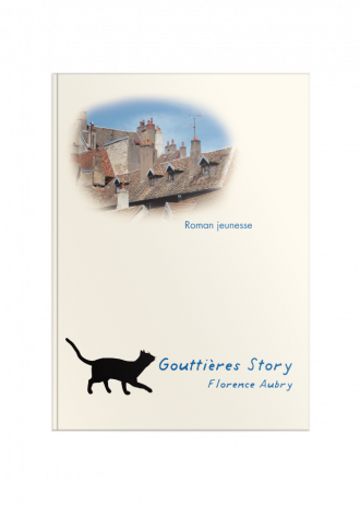 gouttiere_story_front